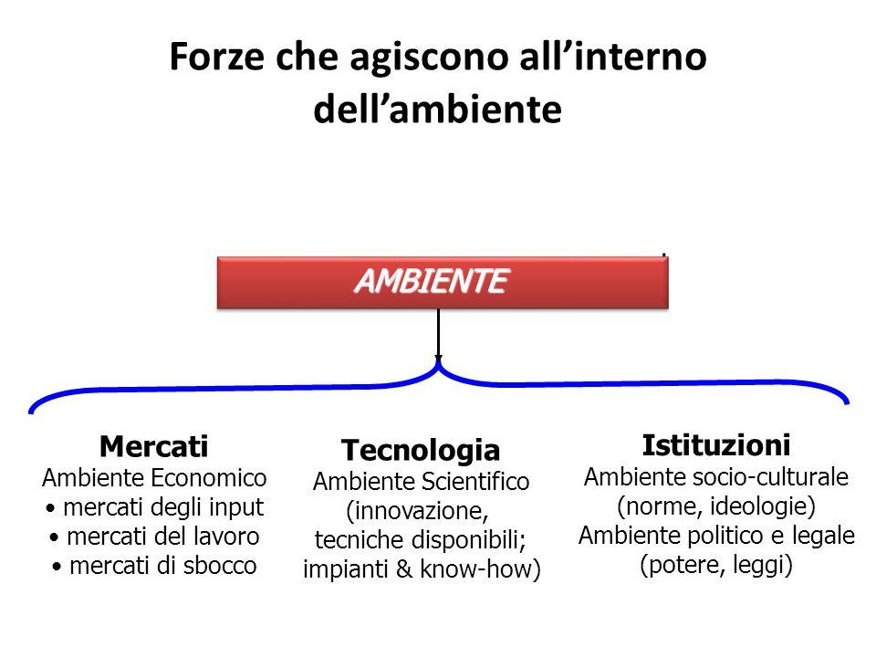 Forze che agiscono allinterno dellambiente Mercati Ambiente Economico mercati degli input mercati del lavoro mercati di sbocco Tecnologia Ambiente Sci