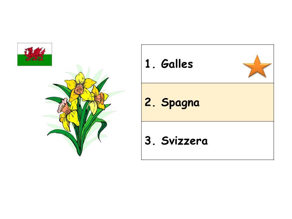 1. Galles 2. Spagna 3. Svizzera