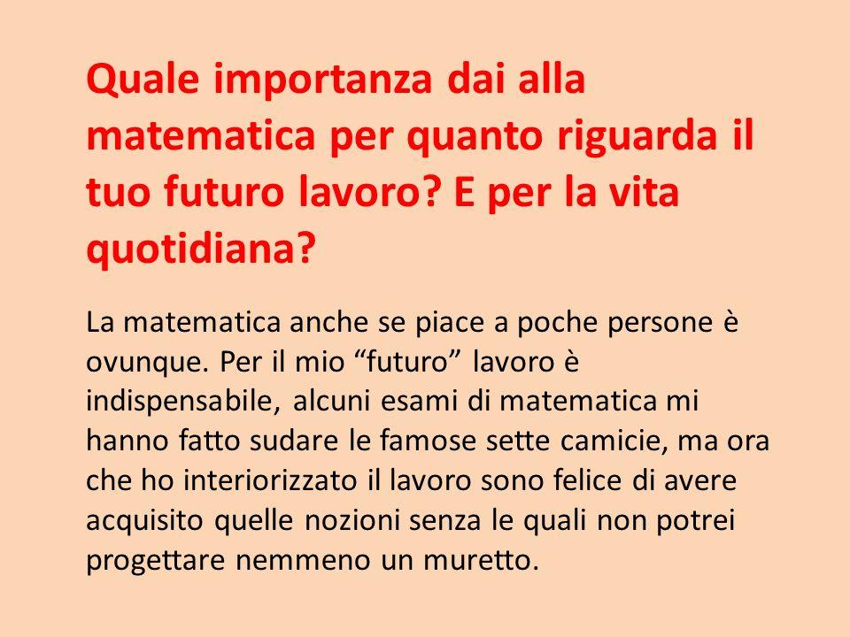 Quale importanza dai alla matematica per quanto riguarda il tuo futuro lavoro? E per la vita quotidiana? La matematica anche se piace a poche persone