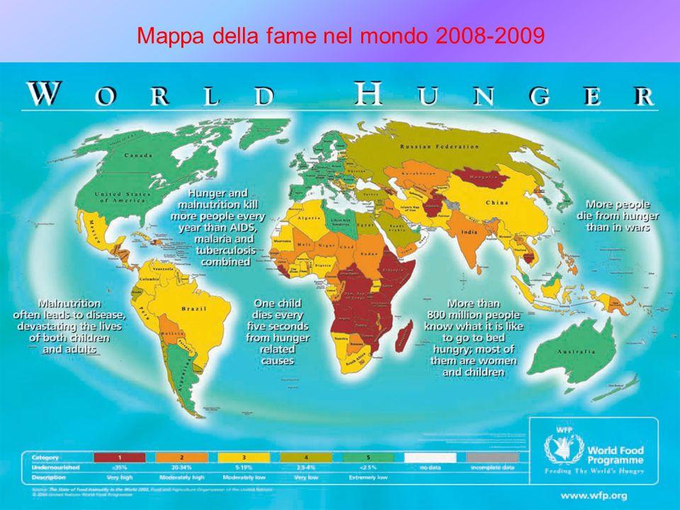 2 Mappa della fame nel mondo 2008-2009