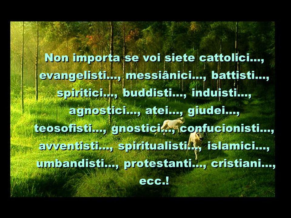 Non importa se voi siete cattolici..., evangelisti..., messiânici..., battisti..., spiritici..., buddisti..., induisti..., agnostici..., atei..., giudei..., teosofisti..., gnostici..., confucionisti..., avventisti..., spiritualisti..., islamici..., umbandisti..., protestanti..., cristiani..., ecc..