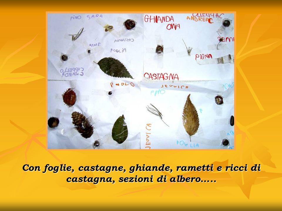 Con foglie, castagne, ghiande, rametti e ricci di castagna, sezioni di albero…..