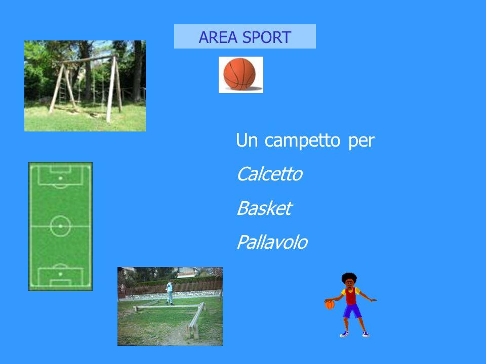 AREA SPORT Un campetto per Calcetto Basket Pallavolo