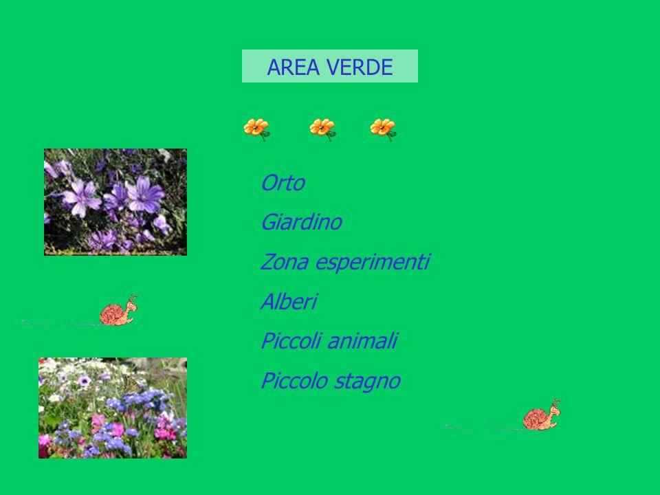 AREA VERDE Orto Giardino Zona esperimenti Alberi Piccoli animali Piccolo stagno