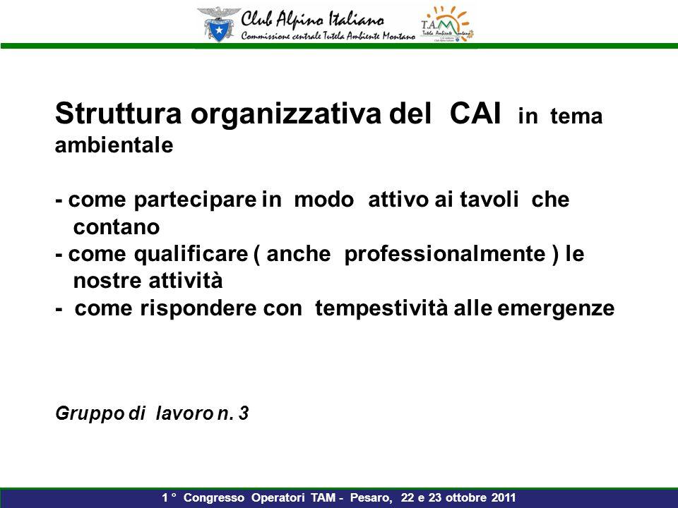 Struttura organizzativa del CAI in tema ambientale - come partecipare in modo attivo ai tavoli che contano - come qualificare ( anche professionalmente ) le nostre attività - come rispondere con tempestività alle emergenze Gruppo di lavoro n.