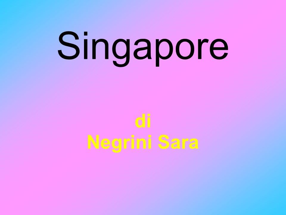 Singapore di Negrini Sara