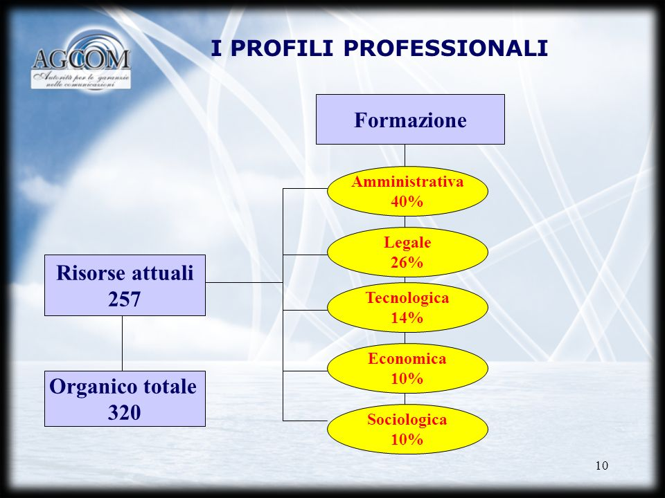 10 Risorse attuali 257 Organico totale 320 Formazione Amministrativa 40% Legale 26% Tecnologica 14% Economica 10% Sociologica 10% I PROFILI PROFESSION
