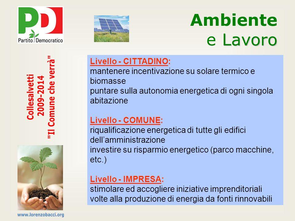 Livello - CITTADINO: mantenere incentivazione su solare termico e biomasse puntare sulla autonomia energetica di ogni singola abitazione Livello - COM