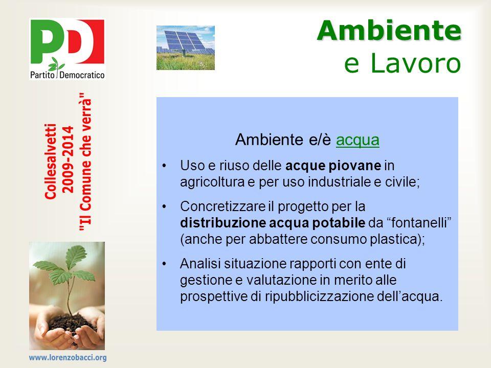 Ambiente Ambiente e Lavoro Ambiente e/è acqua Uso e riuso delle acque piovane in agricoltura e per uso industriale e civile; Concretizzare il progetto