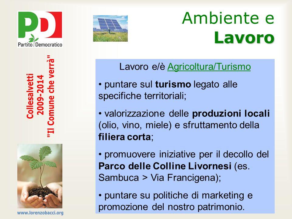 Lavoro Ambiente e Lavoro Lavoro e/è Agricoltura/Turismo puntare sul turismo legato alle specifiche territoriali; valorizzazione delle produzioni local