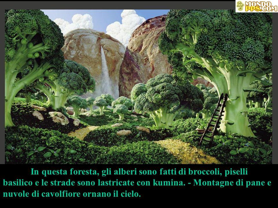 In questa foresta, gli alberi sono fatti di broccoli, piselli basilico e le strade sono lastricate con kumina. - Montagne di pane e nuvole di cavolfio