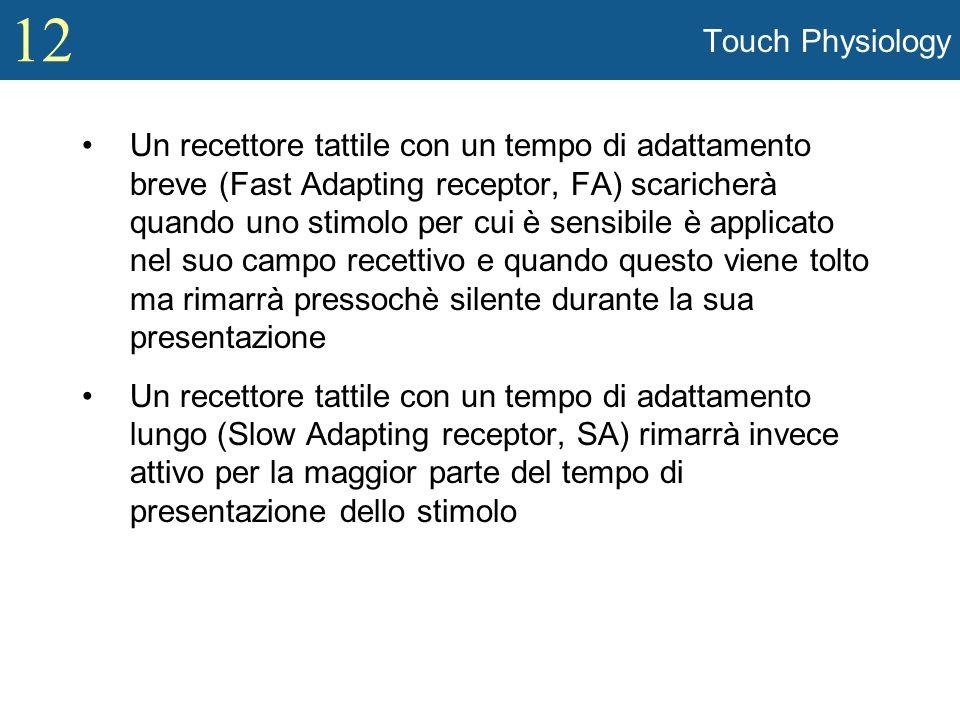 12 Touch Physiology Un recettore tattile con un tempo di adattamento breve (Fast Adapting receptor, FA) scaricherà quando uno stimolo per cui è sensib