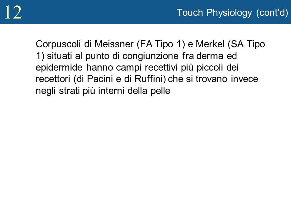 12 Touch Physiology (contd) Corpuscoli di Meissner (FA Tipo 1) e Merkel (SA Tipo 1) situati al punto di congiunzione fra derma ed epidermide hanno cam