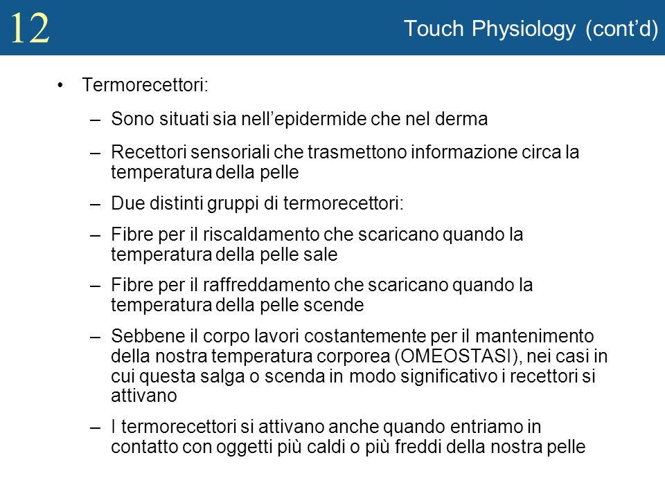12 Touch Physiology (contd) Termorecettori: –Sono situati sia nellepidermide che nel derma –Recettori sensoriali che trasmettono informazione circa la