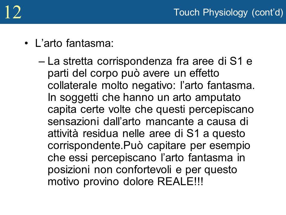 12 Touch Physiology (contd) Larto fantasma: –La stretta corrispondenza fra aree di S1 e parti del corpo può avere un effetto collaterale molto negativ