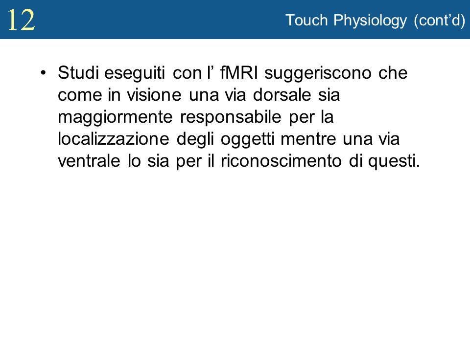 12 Touch Physiology (contd) Studi eseguiti con l fMRI suggeriscono che come in visione una via dorsale sia maggiormente responsabile per la localizzaz