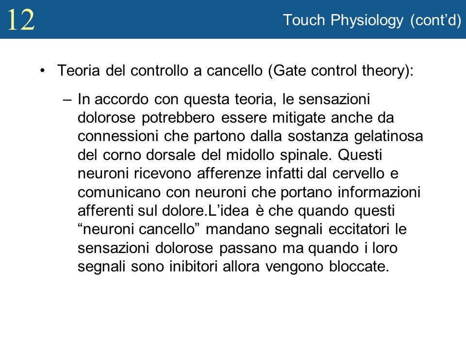12 Touch Physiology (contd) Teoria del controllo a cancello (Gate control theory): –In accordo con questa teoria, le sensazioni dolorose potrebbero es