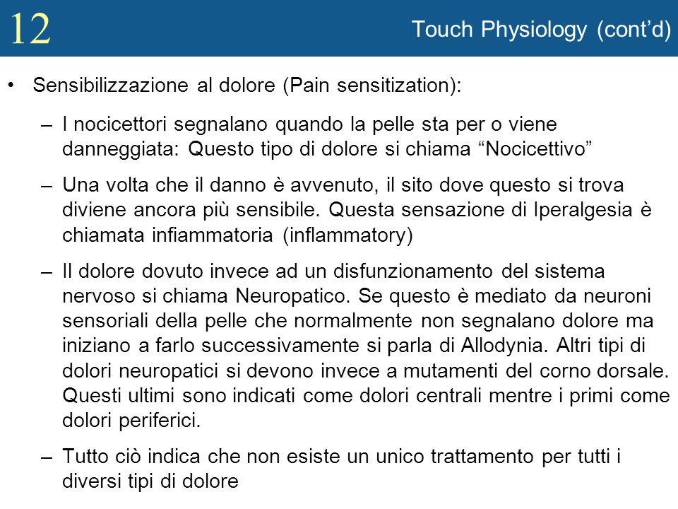12 Touch Physiology (contd) Sensibilizzazione al dolore (Pain sensitization): –I nocicettori segnalano quando la pelle sta per o viene danneggiata: Qu
