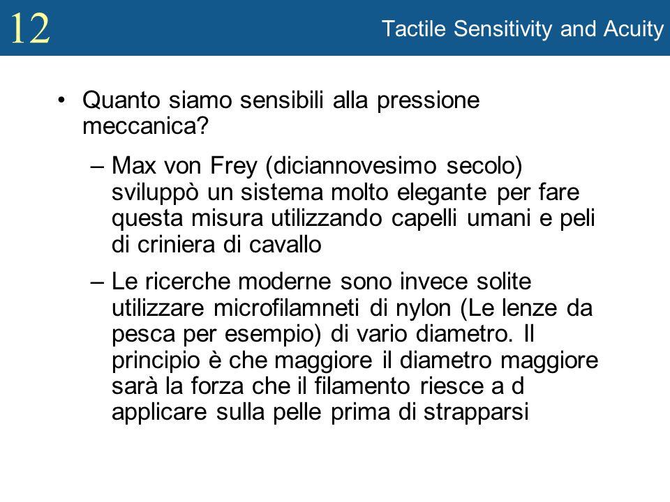 12 Tactile Sensitivity and Acuity Quanto siamo sensibili alla pressione meccanica? –Max von Frey (diciannovesimo secolo) sviluppò un sistema molto ele