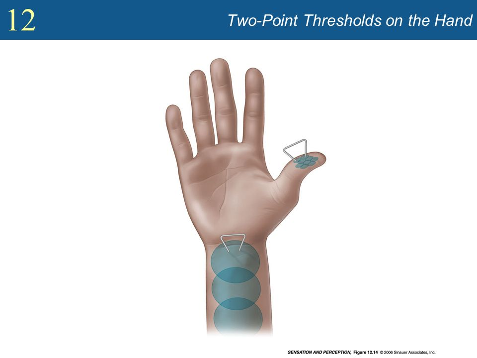 12 Two-Point Thresholds on the Hand