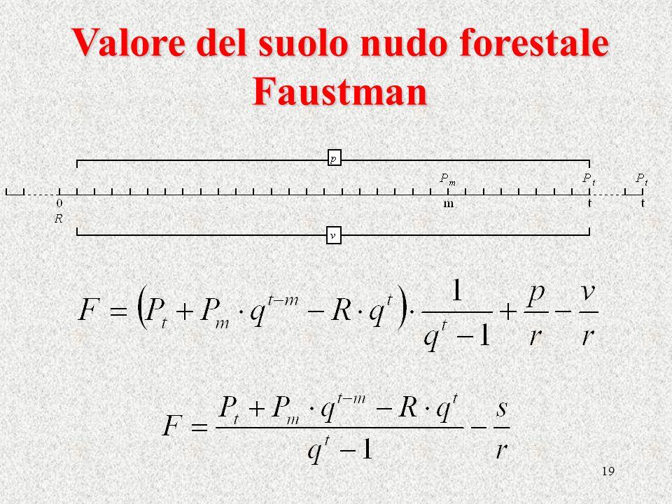 19 Valore del suolo nudo forestale Faustman