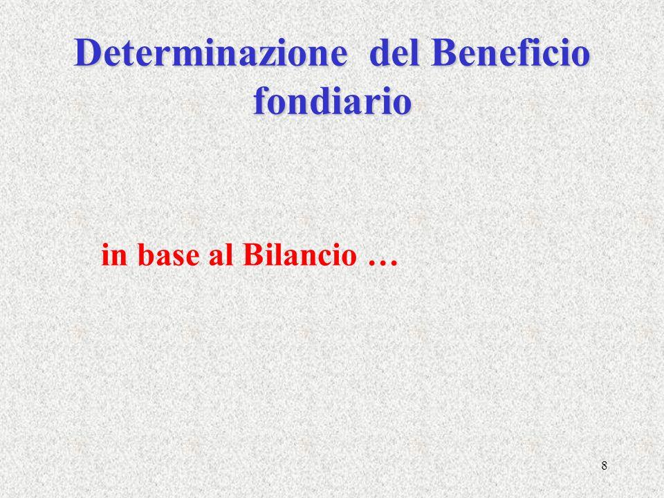 8 Determinazione del Beneficio fondiario in base al Bilancio …