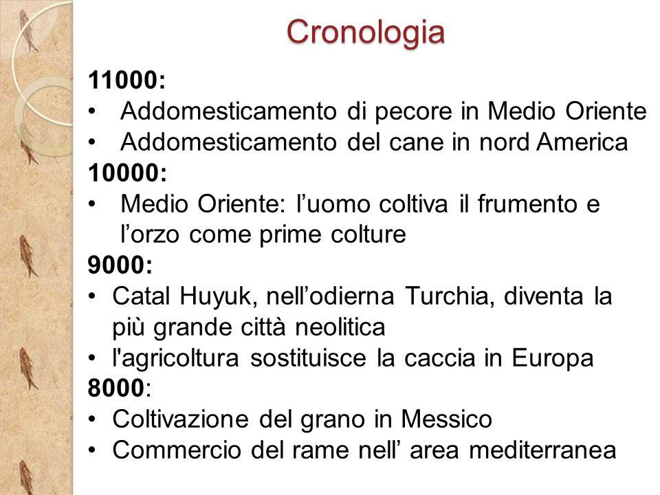 Cronologia 11000: Addomesticamento di pecore in Medio Oriente Addomesticamento del cane in nord America 10000: Medio Oriente: luomo coltiva il frument
