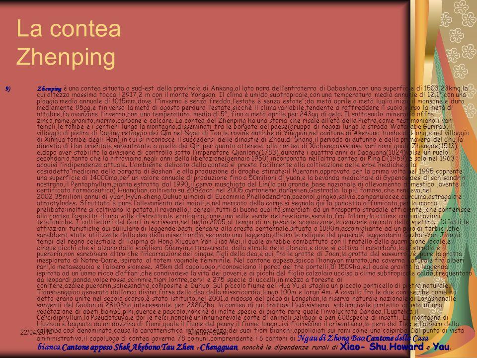 22/04/2014 Antonio Celeri9 La contea Zhenping 9)Zhenping Cantone Cantoneappeso ShekAkebonoTau Zhen Chengguan Xiao- ShuHoward Yau 9)Zhenping è una cont