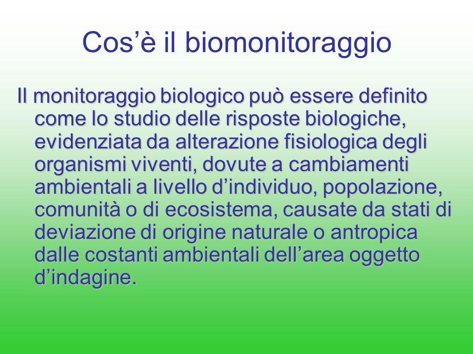 Aree di tutela considerate per le stazioni di bianco/controllo RISERVE NATURALI Fiume Dinisi e Monte Scuderi – Azienda FF.DD.