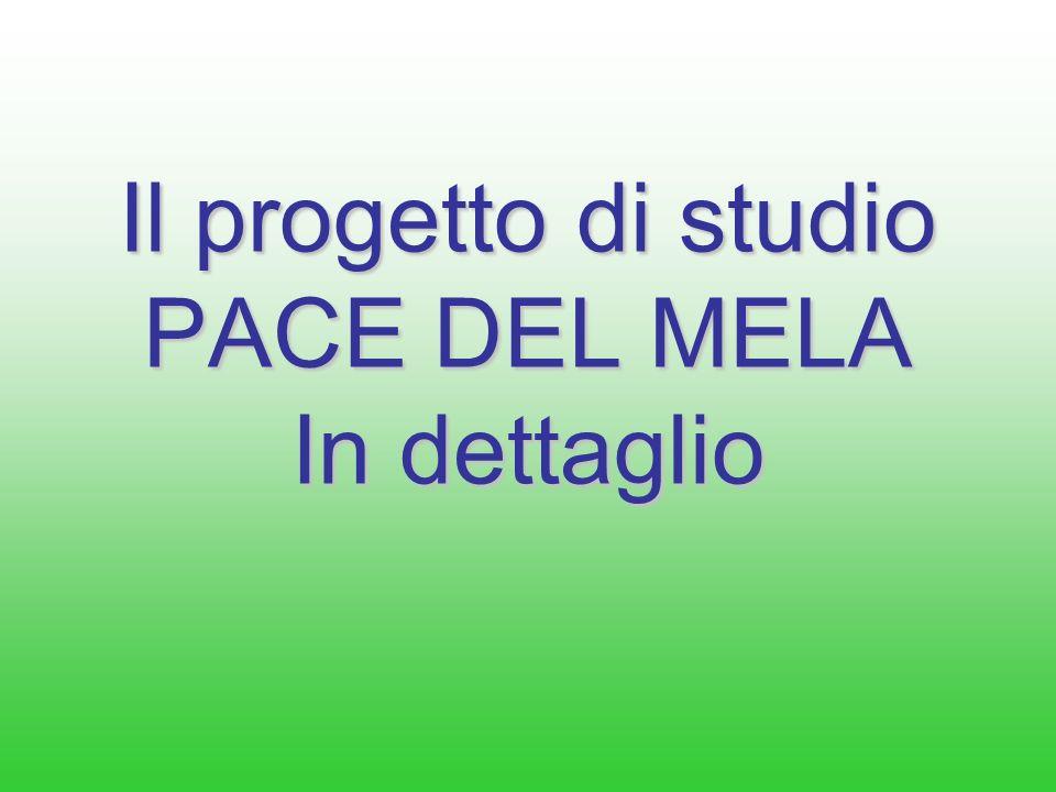 Bibliografia di riferimento Salamone M.,Urzì G., Console Livreri S., Ottonello D.