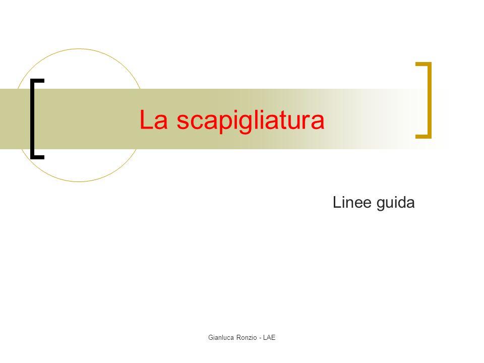 Gianluca Ronzio - LAE La scapigliatura Linee guida