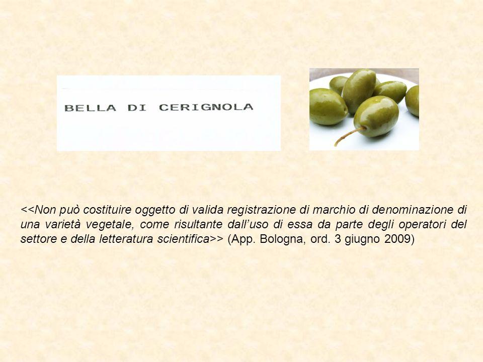 > (App. Bologna, ord. 3 giugno 2009)