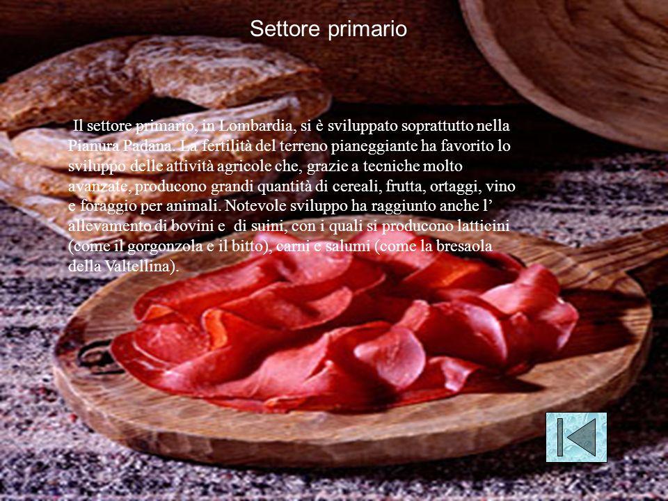 Il settore primario, in Lombardia, si è sviluppato soprattutto nella Pianura Padana.