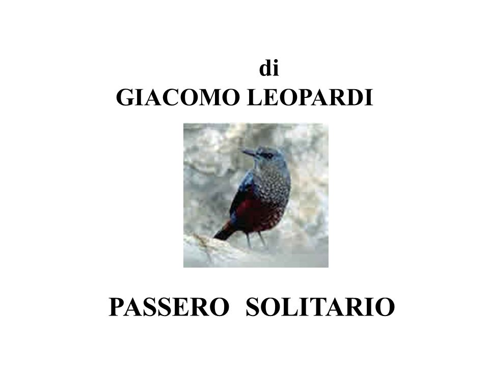 PASSERO SOLITARIO di GIACOMO LEOPARDI