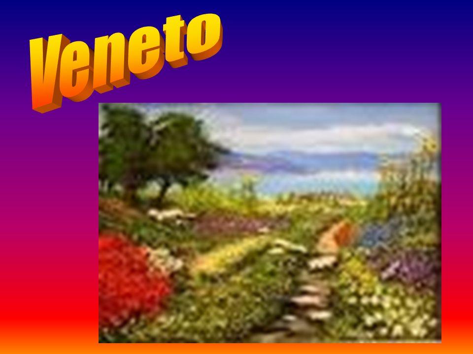 Confini: a Nord: Emilia Romagna A Sud: Lazio e Abruzzo A Ovest: Umbria e Toscana A Est: Mar Adriatico SUD NORD OVEST EST