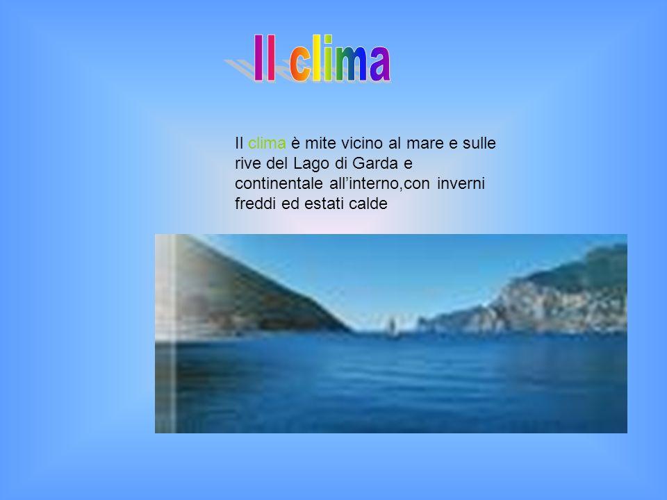 Il clima è mite vicino al mare e sulle rive del Lago di Garda e continentale allinterno,con inverni freddi ed estati calde