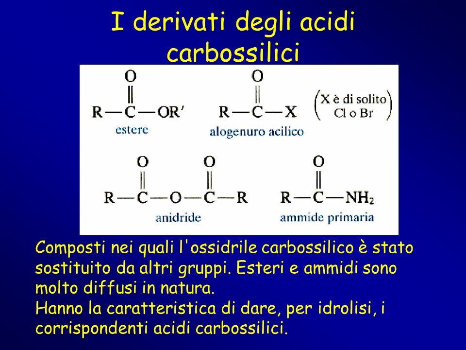 I derivati degli acidi carbossilici Composti nei quali l'ossidrile carbossilico è stato sostituito da altri gruppi. Esteri e ammidi sono molto diffusi