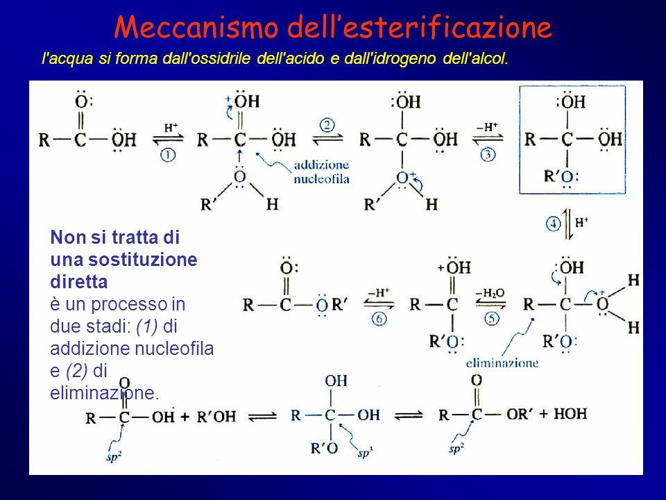 Meccanismo dellesterificazione l'acqua si forma dall'ossidrile dell'acido e dall'idrogeno dell'alcol. Non si tratta di una sostituzione diretta è un p