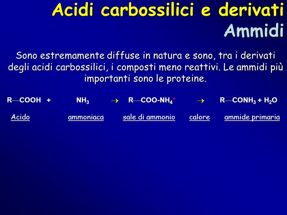 Acidi carbossilici e derivati Ammidi Sono estremamente diffuse in natura e sono, tra i derivati degli acidi carbossilici, i composti meno reattivi. Le