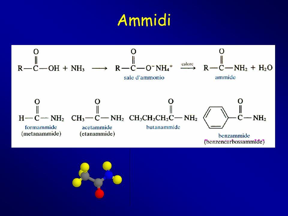 Ammidi