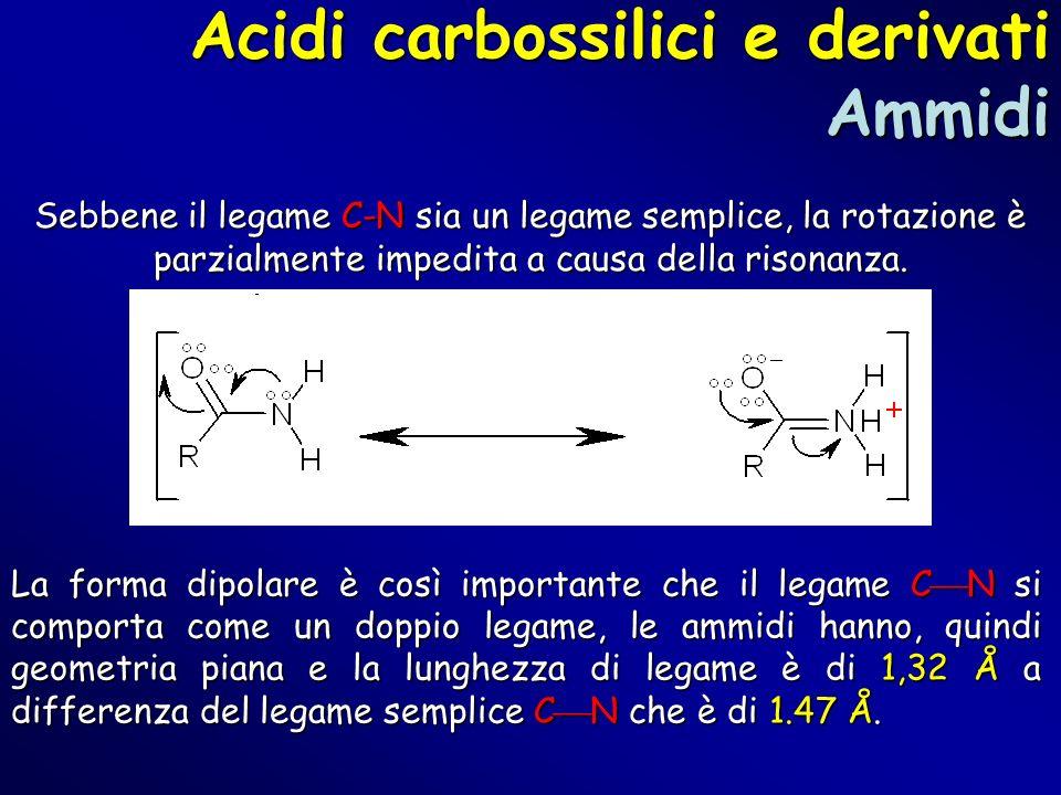 Acidi carbossilici e derivati Ammidi Sebbene il legame C-N sia un legame semplice, la rotazione è parzialmente impedita a causa della risonanza. La fo