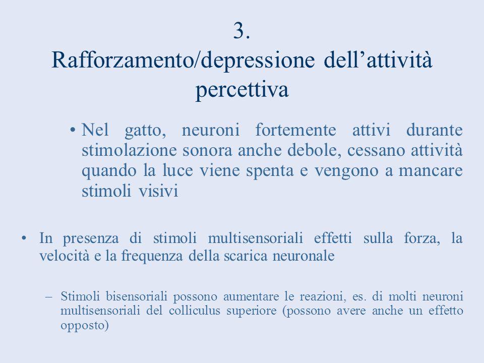 3. Rafforzamento/depressione dellattività percettiva Nel gatto, neuroni fortemente attivi durante stimolazione sonora anche debole, cessano attività q