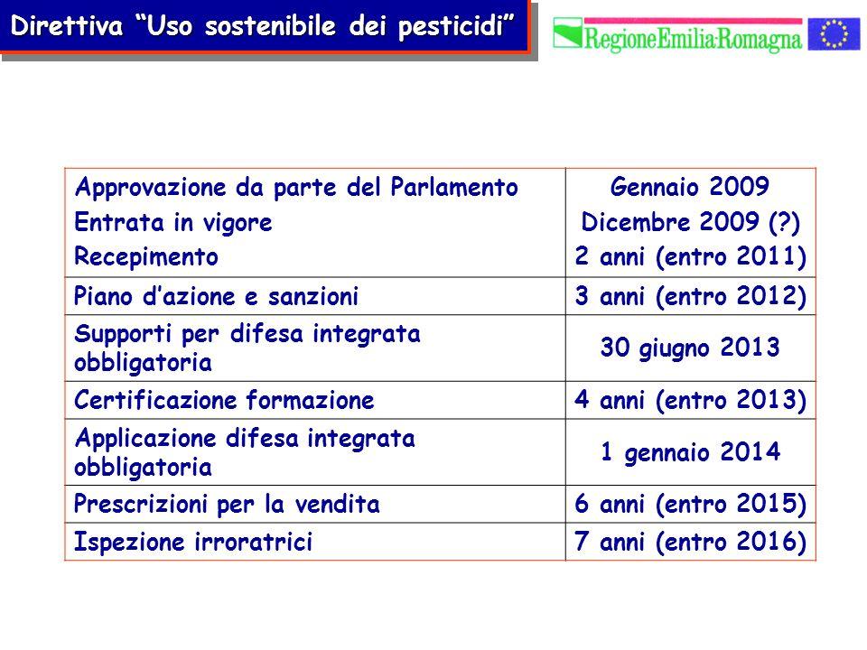 Approvazione da parte del Parlamento Entrata in vigore Recepimento Gennaio 2009 Dicembre 2009 (?) 2 anni (entro 2011) Piano dazione e sanzioni3 anni (