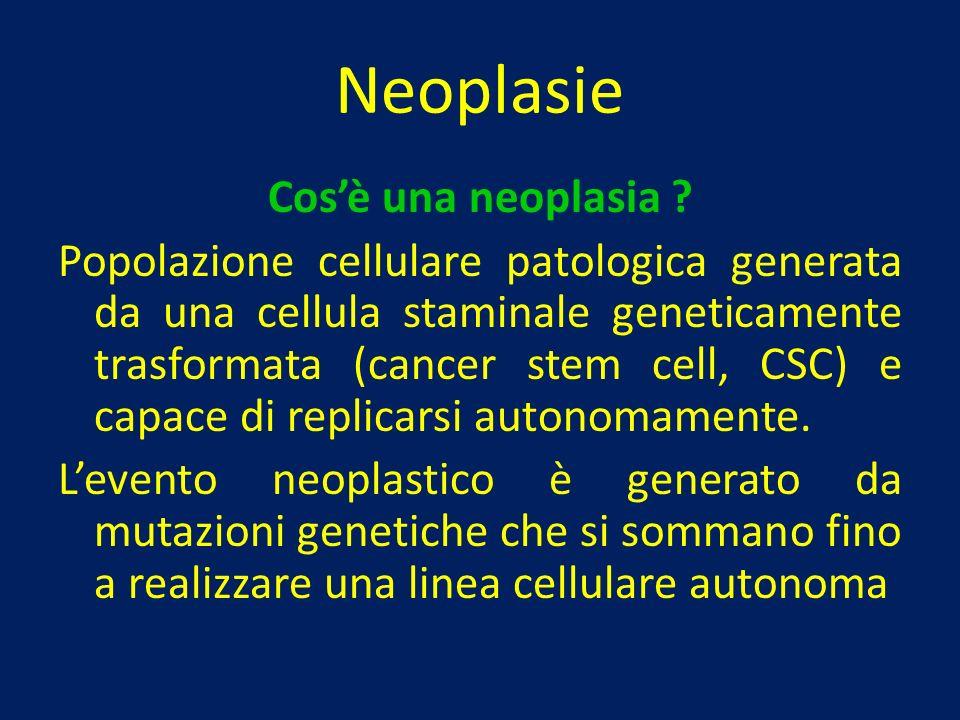 Neoplasie Cosè una neoplasia ? Popolazione cellulare patologica generata da una cellula staminale geneticamente trasformata (cancer stem cell, CSC) e