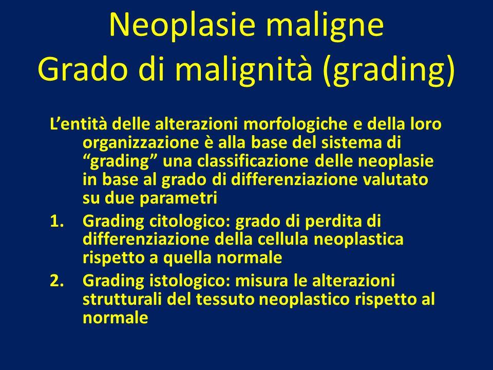 Neoplasie maligne Grado di malignità (grading) Lentità delle alterazioni morfologiche e della loro organizzazione è alla base del sistema di grading u