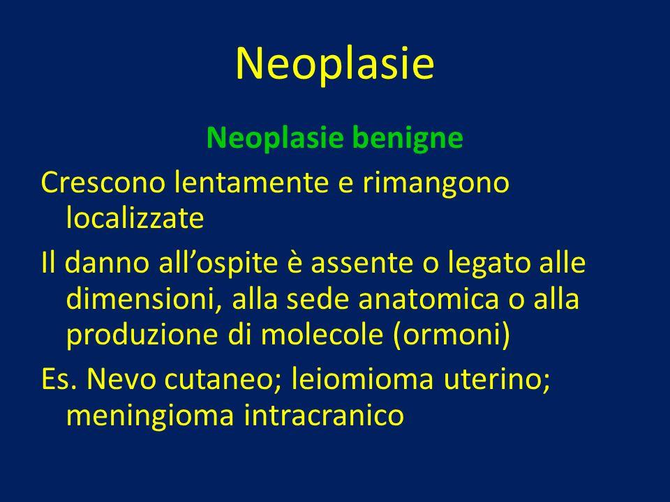 Neoplasie Neoplasie benigne Crescono lentamente e rimangono localizzate Il danno allospite è assente o legato alle dimensioni, alla sede anatomica o a