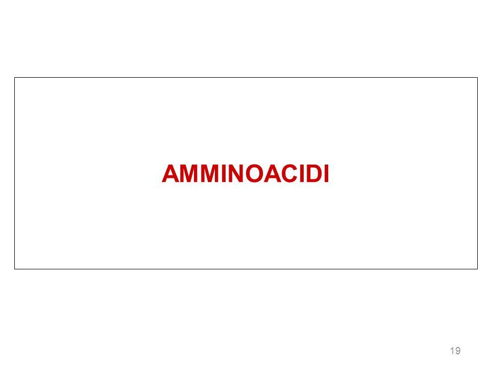 19 AMMINOACIDI