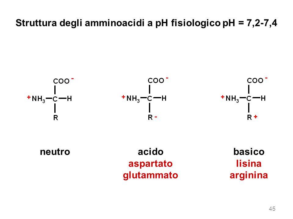 Struttura degli amminoacidi a pH fisiologico pH = 7,2-7,4 neutroacido aspartato glutammato basico lisina arginina 45