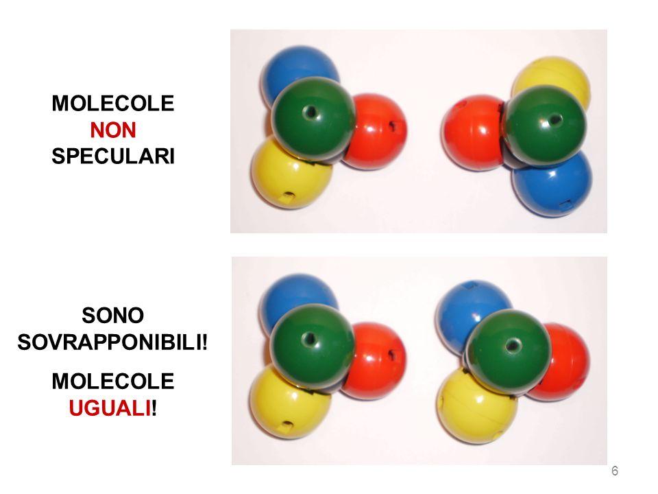 47 Punto isoelettrico delle proteine ProteinaPunto isoelettrico, pI pepsinaminore di 1,0 ovoalbumina4,6 albumina sierica4,9 ureasi5,0 emoglobina6,8 mioglobina7,0 citocromo c10,7 lisozima11,0