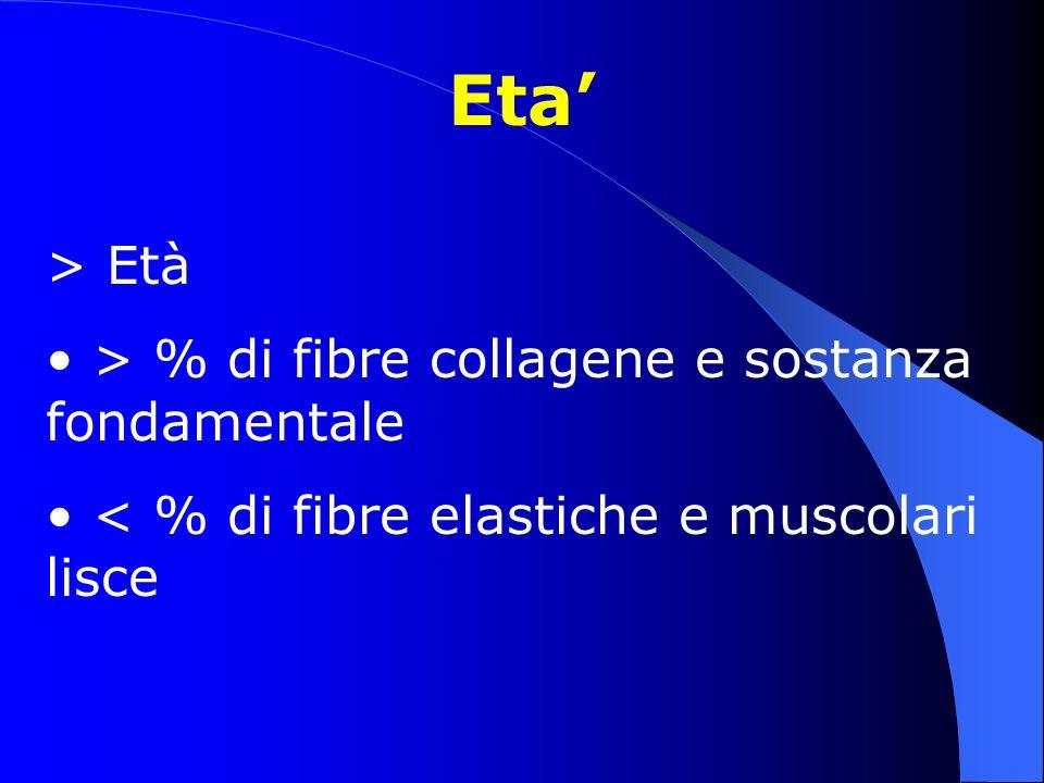 Eta > Età > % di fibre collagene e sostanza fondamentale < % di fibre elastiche e muscolari lisce